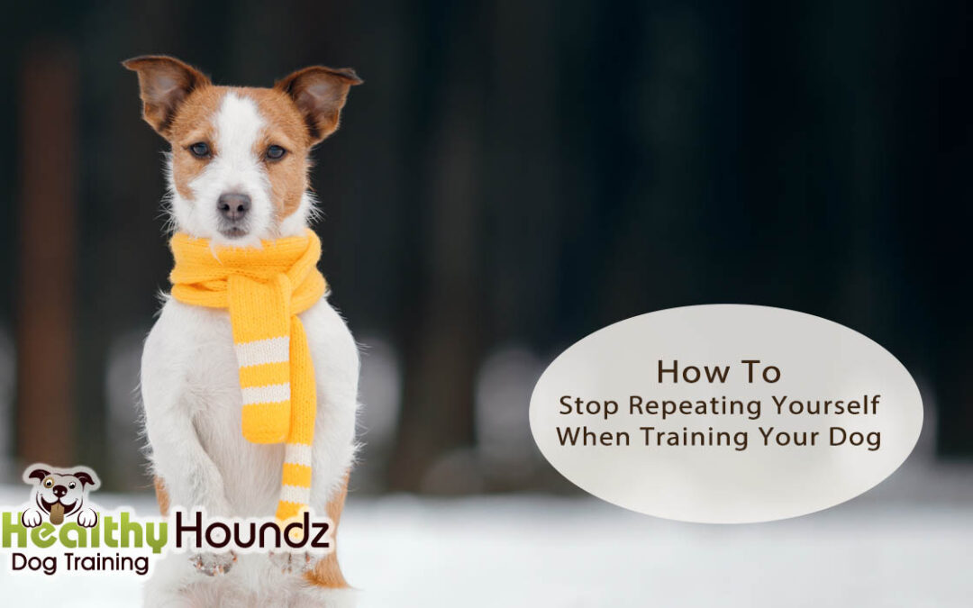 How To Stop Repeating Yourself When Training Your Dog